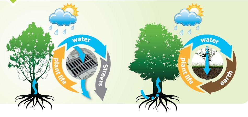Gestion des eaux de pluie grâce au Treeparker Jardiprotec